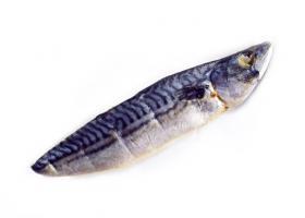 鲐鱼文化干